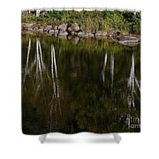 Abstract Along The River Shower Curtain