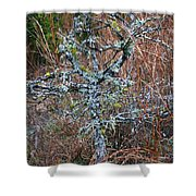 Abstract And Lichen Shower Curtain