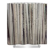 Abstract Aspen Tree Trunks Shower Curtain