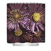 Abstract Aster Flowers Shower Curtain