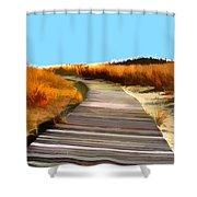 Abstract Beach Dune Boardwalk Shower Curtain
