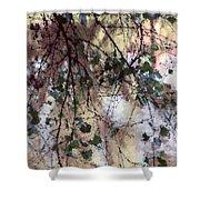 Abstract Birch Shower Curtain