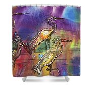 Abstract Birds Shower Curtain