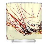 Abstract Branch Shower Curtain