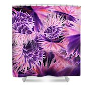 Abstract Burst Of Flowers Shower Curtain