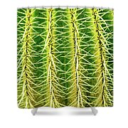 Abstract Cactus Shower Curtain
