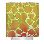 Abstract Cells 2 Shower Curtain