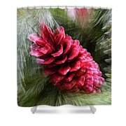 Abstract Christmas Card - Red Pine Cone Blast Shower Curtain