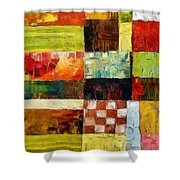 Abstract Color Study With Checkerboard And Stripes Shower Curtain