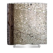 Abstract Concrete 12 Shower Curtain