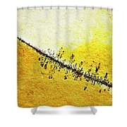 Abstract Crack Line On The Orange Rock Shower Curtain