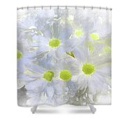 Abstract Daisy Boquet Shower Curtain