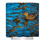 Abstract Duck Shower Curtain