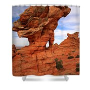 Abstract Erosion Shower Curtain