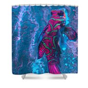 Abstract Fish Shower Curtain
