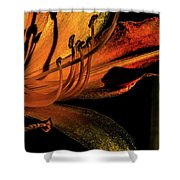 Abstract Flower Golden Red Shower Curtain