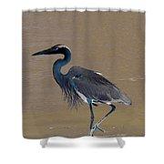 Abstract Heron Art Shower Curtain