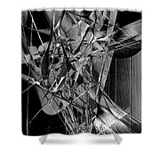 Abstract In Black And White 2 Shower Curtain