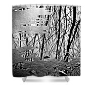 Abstract In Ice Shower Curtain