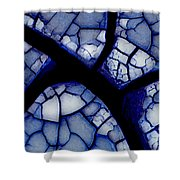 Abstract In Mud 1.1 Shower Curtain