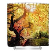 Abstract Japanese Maple Tree 2 Shower Curtain