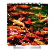 Abstract Koi 38 Shower Curtain