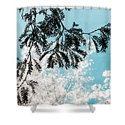 Abstract Locust Shower Curtain