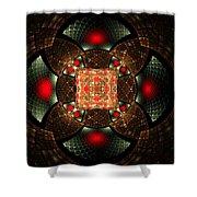 Abstract Mandala 2 Shower Curtain