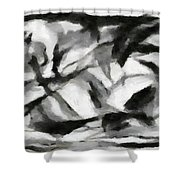 Abstract Monochome 156 Shower Curtain