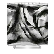 Abstract Monochome 158 Shower Curtain
