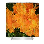 Abstract Motif By Yellow Daffodils Shower Curtain