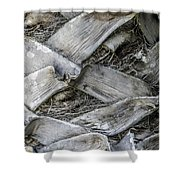 Abstract Nature Tropical Palm Tree Bark 1873a Shower Curtain