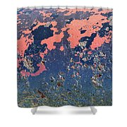 Abstract No. 159-1 Shower Curtain