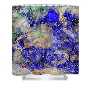 Abstract No 4 Shower Curtain