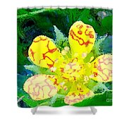 Abstract Of A Wild Buttercup Flower Shower Curtain