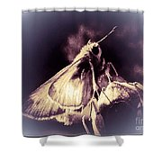 Abstract Of Skipper Butterfly Shower Curtain