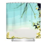 Abstract  Of Trees And Sky Shower Curtain