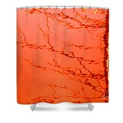 Abstract Orange Shower Curtain