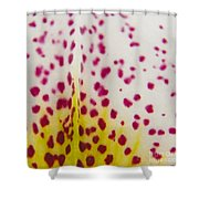 Abstract Orchid Shower Curtain