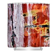 Abstract Painting Untitled #45 Shower Curtain