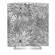 Abstract Pen And Ink Design In Black And White Shower Curtain