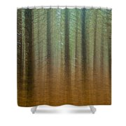 Abstract Pines Shower Curtain