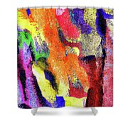 Abstract Poster Shower Curtain