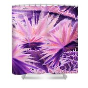Abstract Purple Flowers Shower Curtain