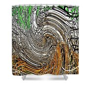 Abstract Reeds Shower Curtain