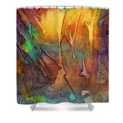 Abstract Reflection Shower Curtain