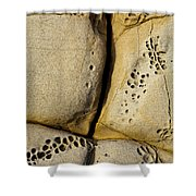 Abstract Rock Pocked With Holes And Divided By Lines Shower Curtain