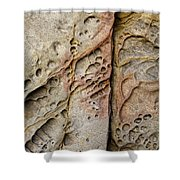 Abstract Rock Stained With Red And Gold Shower Curtain