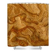 Abstract Rock With Swirling Lines Shower Curtain