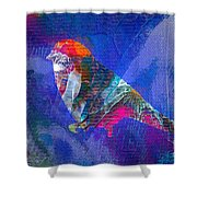 Abstract Series Jl312116 Shower Curtain